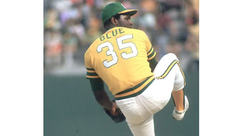 Image result for vida blue