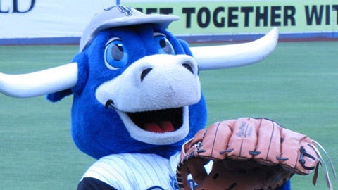 Hornsby the Bull will get a complete makeover, inside and out, for the 2011 season.