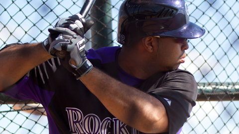 Wilin Rosario smacked 19 homers in his first Texas League season in 2010.