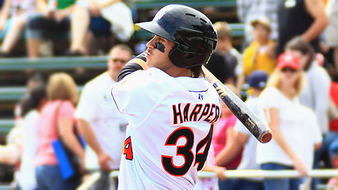 Bryce Harper leads the South Atlantic League with a .396 batting average.
