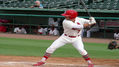 Greg Garcia drove home two with a triple in a 6-3 loss Tuesday night