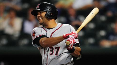 Chris Dominguez hit. 266 with 18 homers across two levels last year.