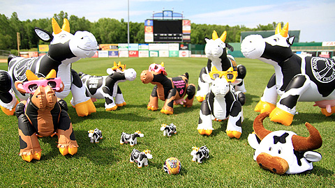 Wisconsin's salute to cows will feature plenty of souvenirs and memories for fans.