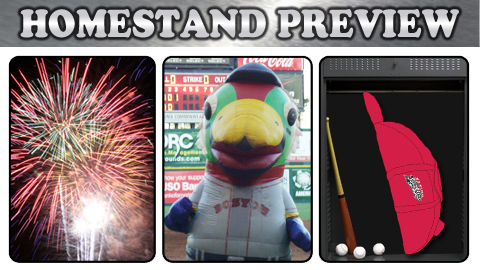 Fireworks (July 4th, 5th & 6th), Zooperstars! (July 7th) and Bat Bag Giveaway (July 8th)