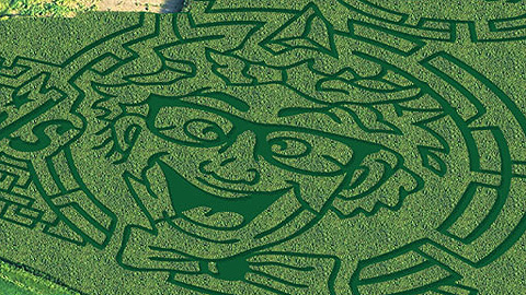 The Crazy Hot Dog Vendor of the R-Phils will have his likeness featured in Mast Farms corn maze.
