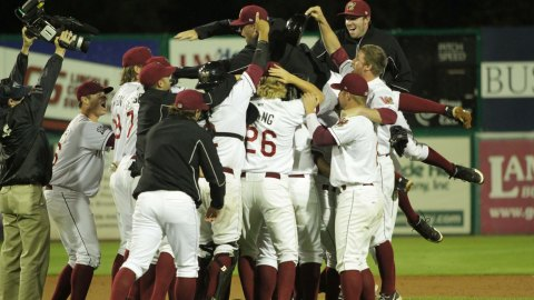 The Wisconsin Timber Rattlers celebrate after the final out of the Western Division Finals.