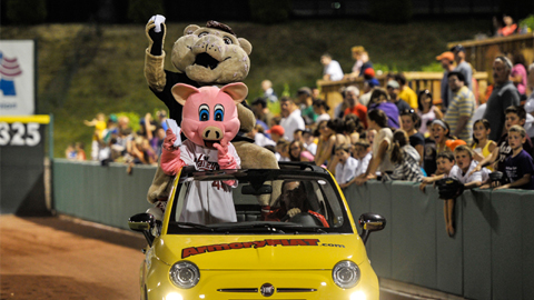 SouthPaw & Ribbie make their way around the stands during one of the nightly t-shirt tosses.