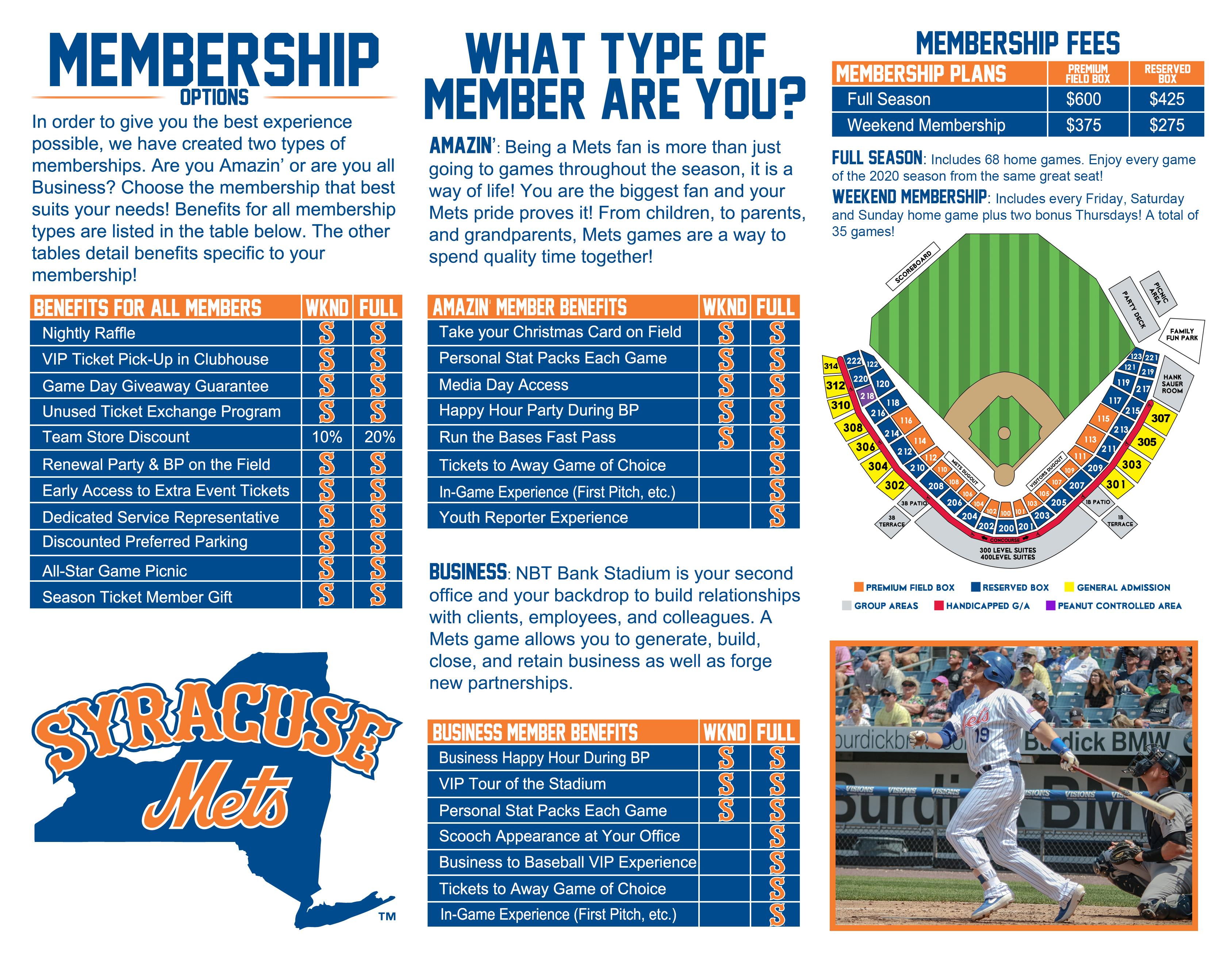 Mets 2020 Printable Schedule.Syracuse Mets Schedule Schedule Mets