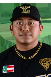carlos pech stats highlights bio mexican league stats