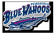 www.bluewahoos.com