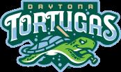 www.daytonatortugas.com