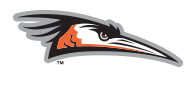 www.theshorebirds.com