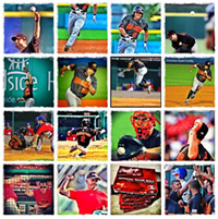 RocRedWings on Instagram